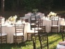 Ivory and peach Spring garden wedding rentals